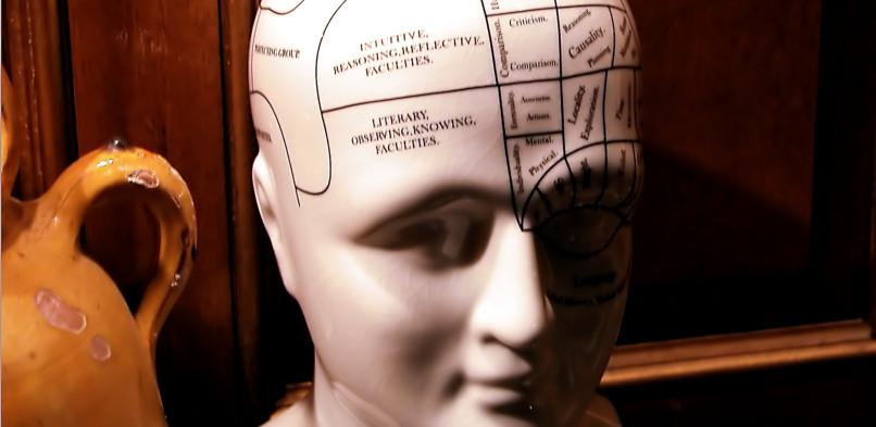 Hersenfeitjes